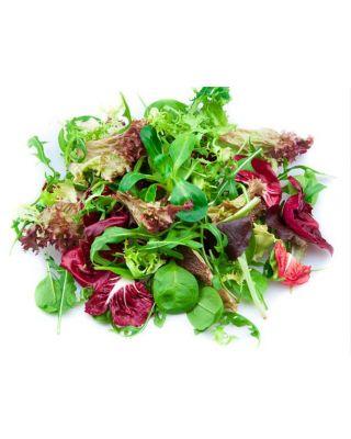 Salad Mix 5lb Bag.JPG